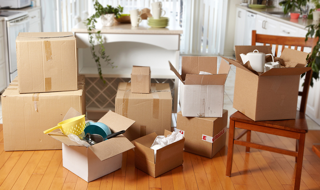 Select Professional Packers Movers in Vapi
