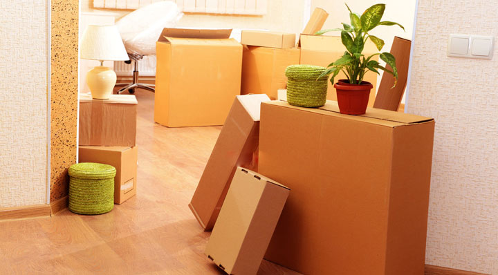 House Shifting in Navi Mumbai