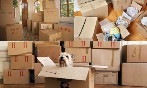 Hire Best Packers and Movers in India