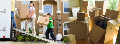 Top Movers and Packers in Raipur